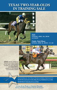 Texas 2YO Sale