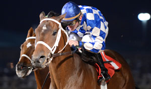 Coyote Legend wins the $100,000 Star of Texas Stakes * Photo by Coady Photography