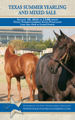 Texas Yearling and Mixed Sale